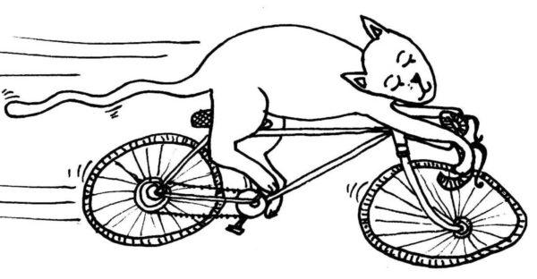 Ventes de vélos d'occasion